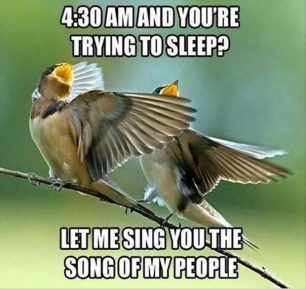 let me sing for you, is it 4:30 am?!