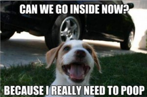 can-we-go-inside-now