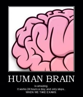 Human brain is amazing
