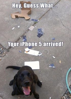 Your phone arrived