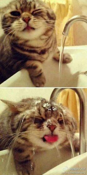 what?! …nah, it's bath time