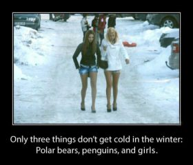 3 Things That Don't Get Cold In The Winter