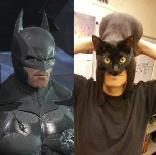 I am catman!