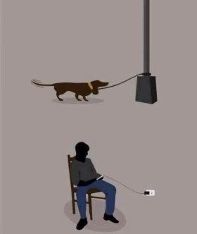 Now we are like our pets