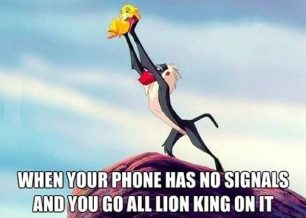 You go all lion king